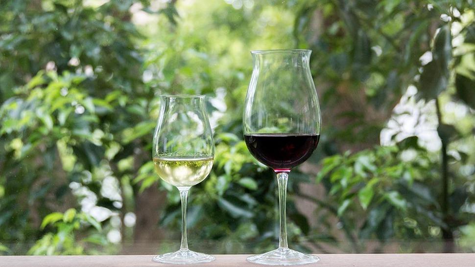 タサキ 若いタイプ 12oz 24ozにワインを入れた様子